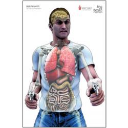 Tarcza anatomiczna BOB